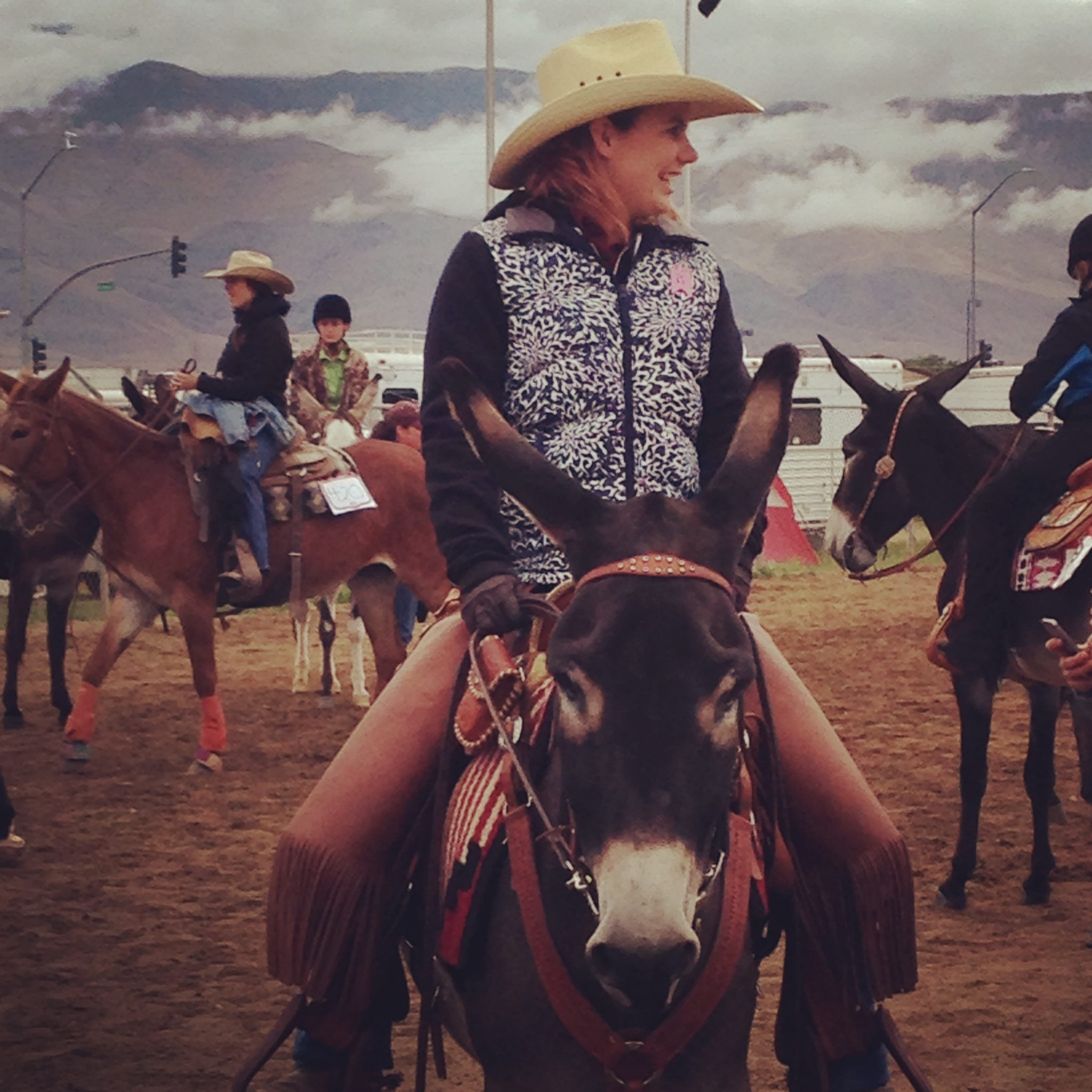 image: competitors on mules