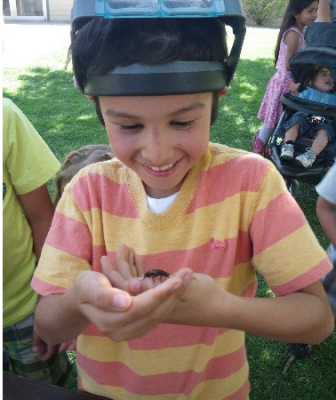 Kids love bugs!