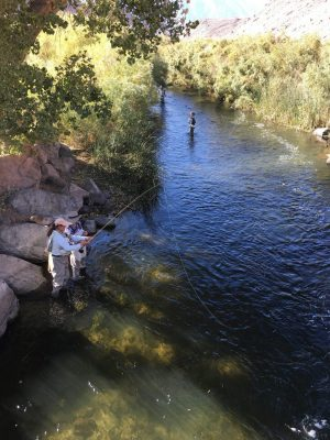 photo of women fly fishing in river
