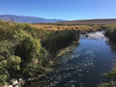 photo of the lower Owens River