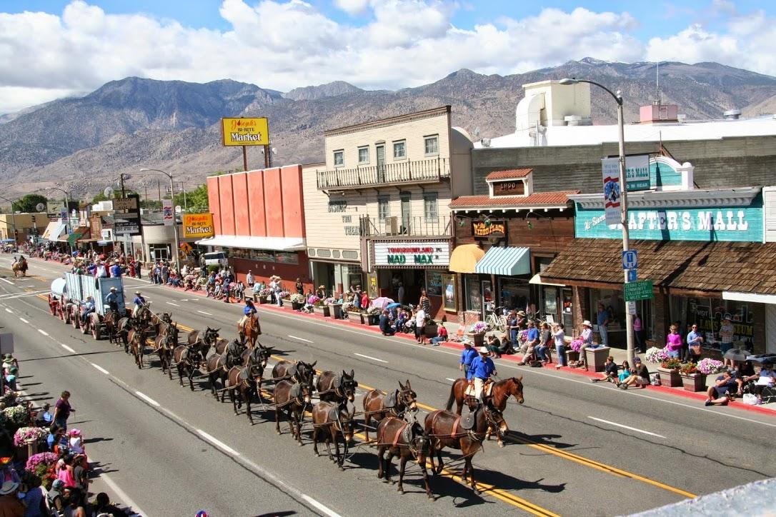 Mule days parade