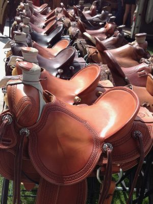 image of a row of saddles for sale.