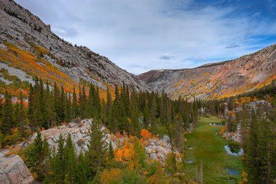 Fall colors Bishop Creek South Fork