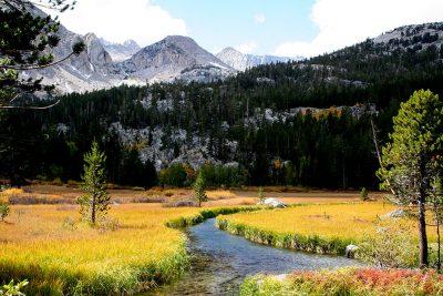 Grass Lake. Bishop, CA.