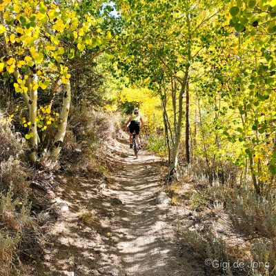 Riding Lower Rock Creek trail.