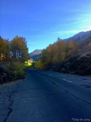 Bishop Creek Canyon fall
