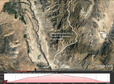 White Mountain Rd map