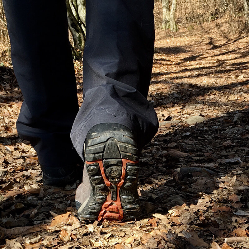Close up of hiker's shoes on trail