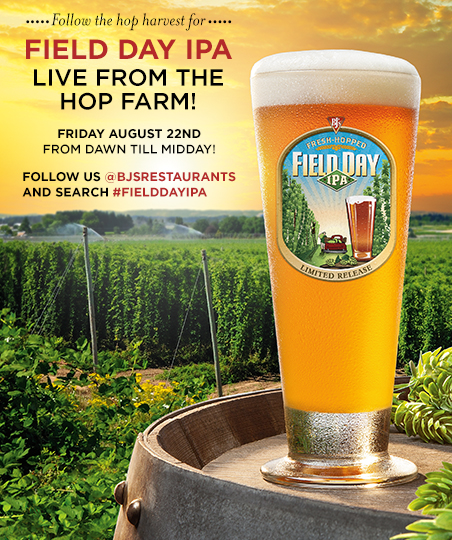 Follow the hop harvest for BJ's Field Day IPA at the hop farm