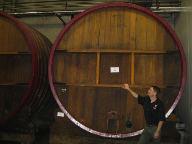 Giant oak barrels for aging craft beer