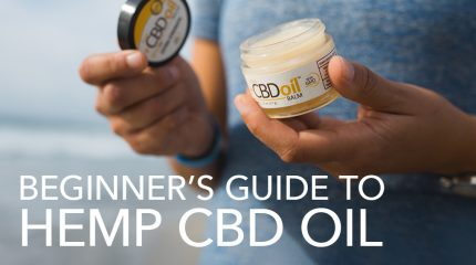 The Beginners guide to CBD