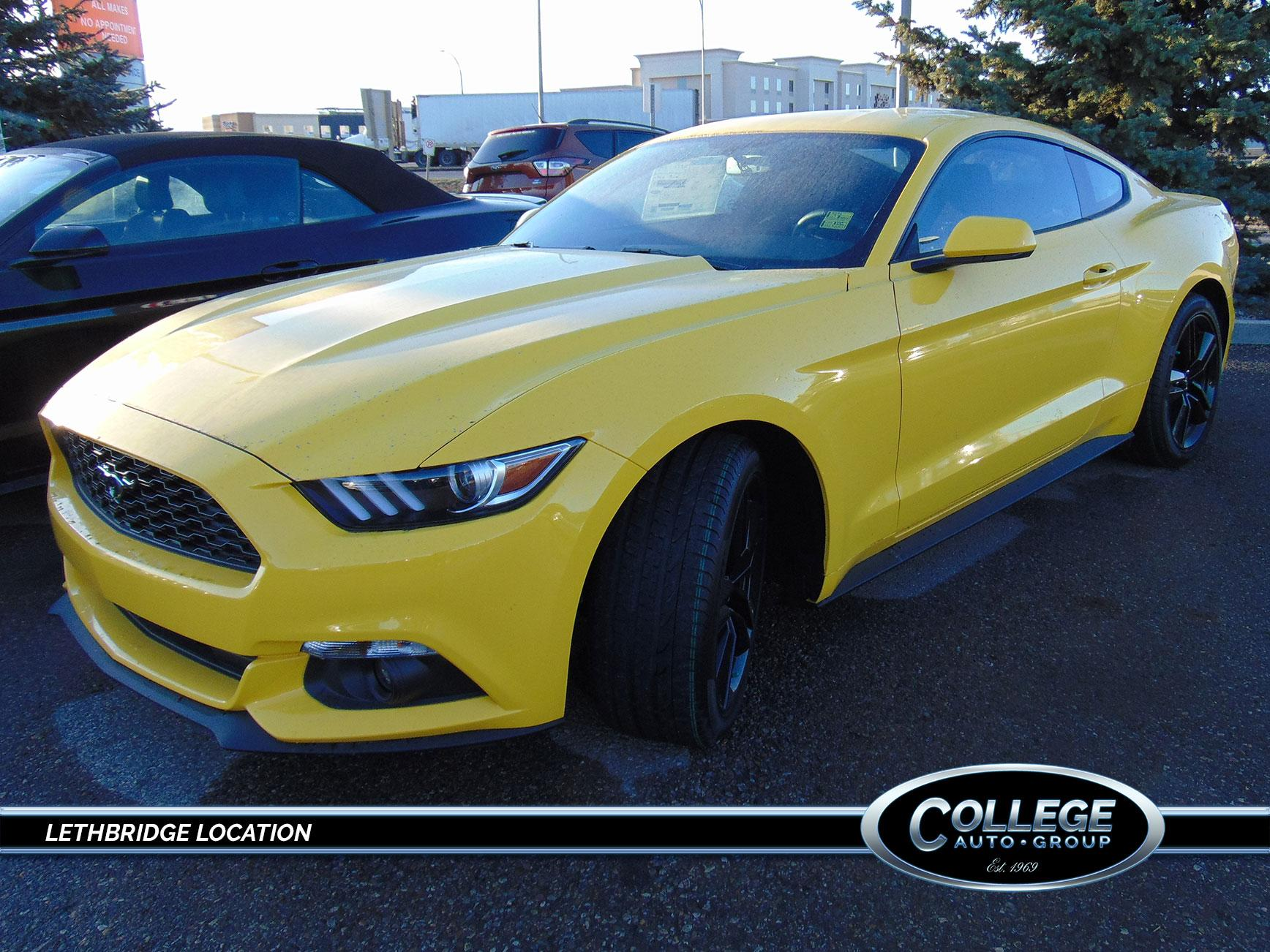 2017 Ford Mustang & New Vehicle Offers   Lethbridge Ford u0026 Lincoln Dealer   College ... markmcfarlin.com