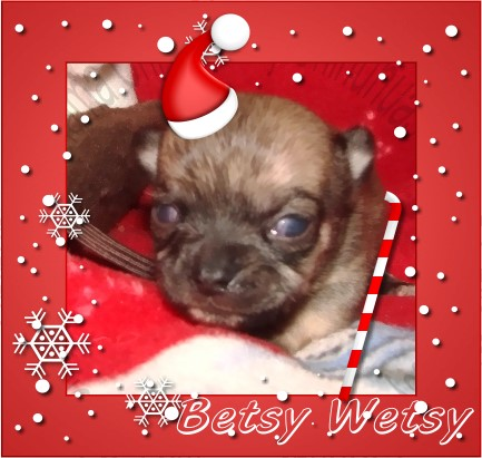 Betsy Wetsy