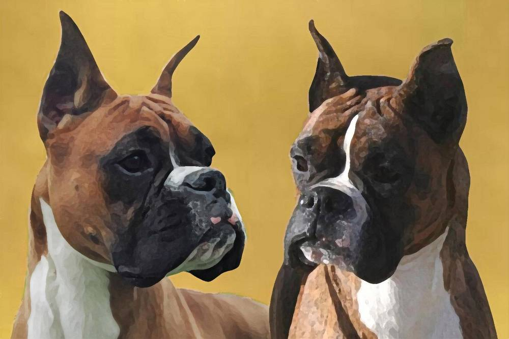 Honey and Penny painting