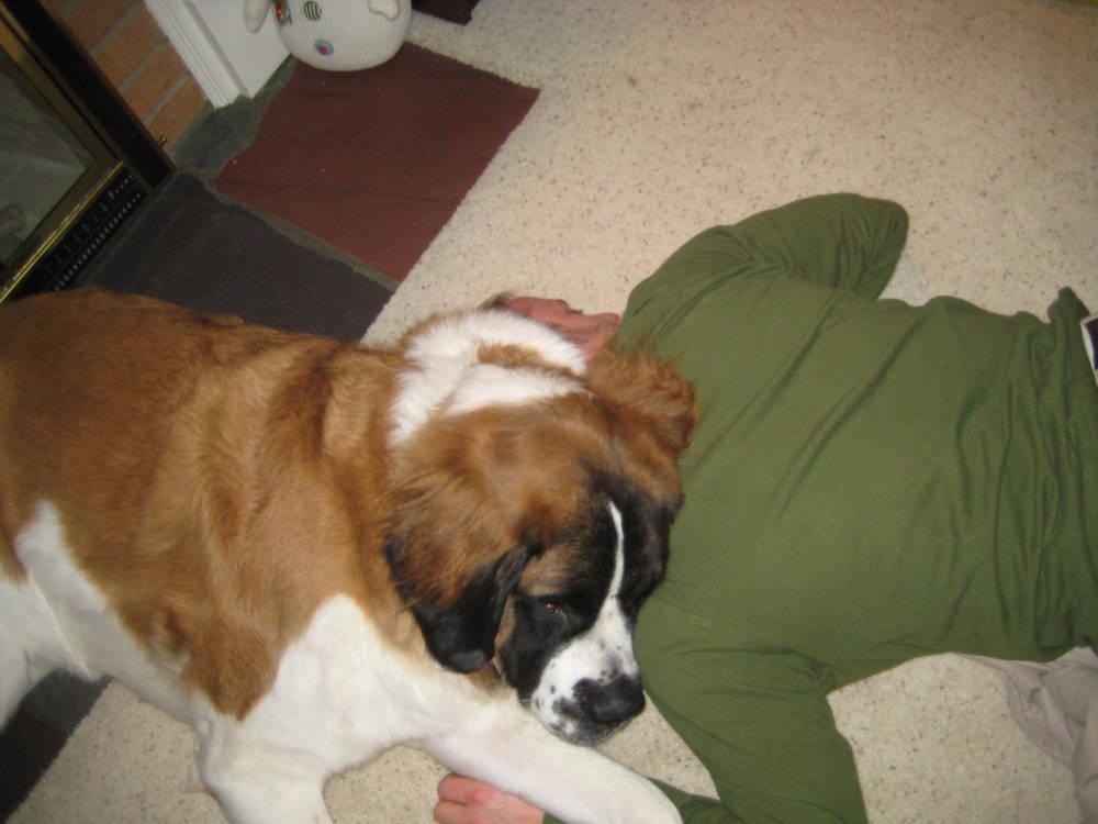 Our big cuddler
