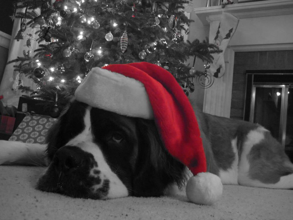 Santa's tired