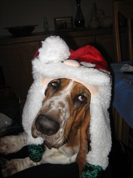 Chelsea_Christmas