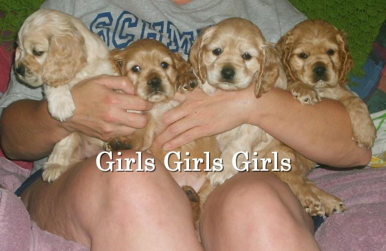 6wk_girls