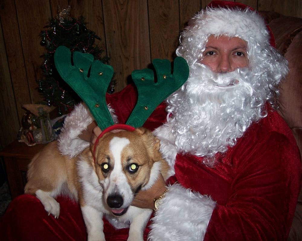 Newman with Santa