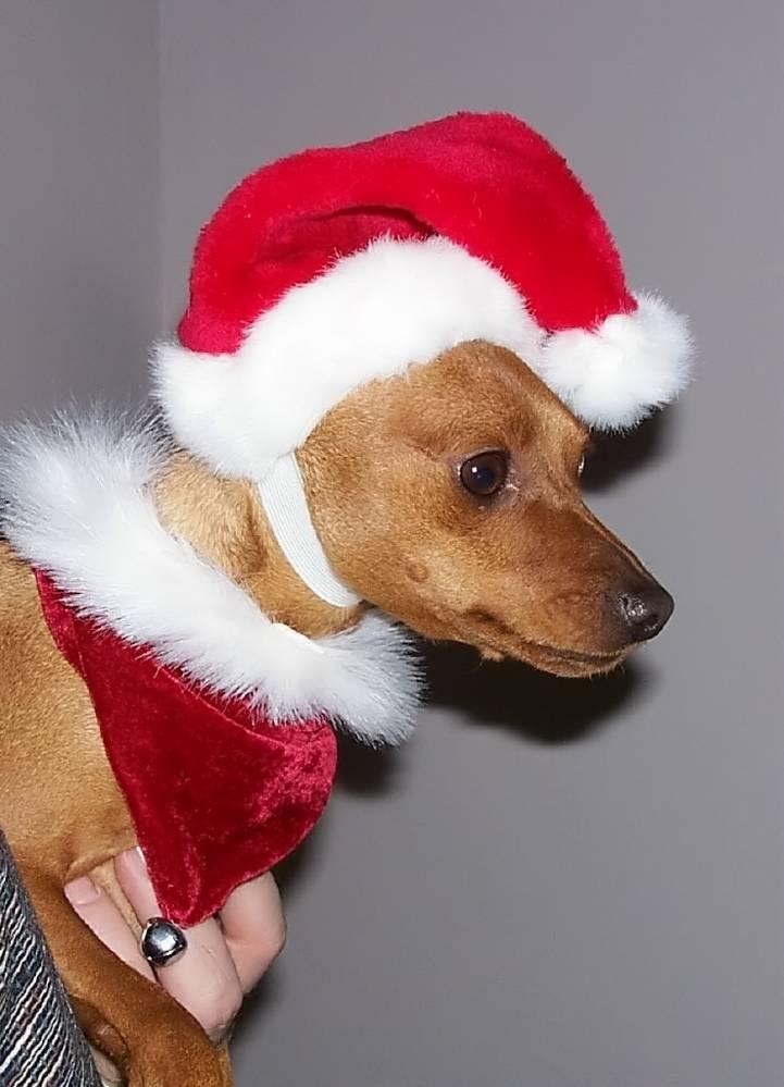 MinPin Christmas