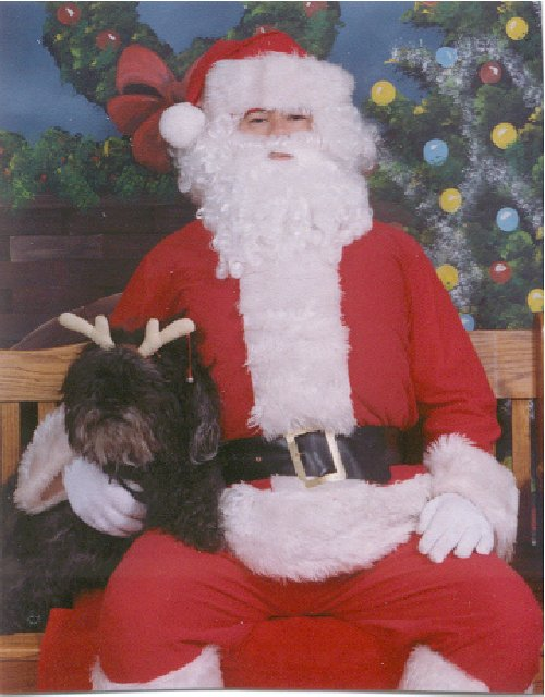 Puli with Santa