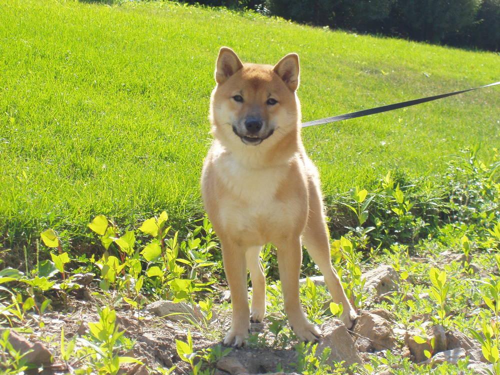 Suki smiling