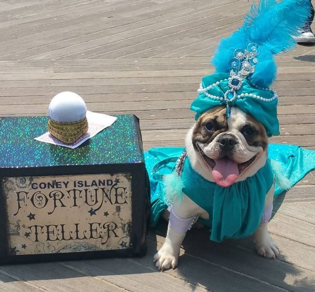 Lola the Coney Island Fortune Teller
