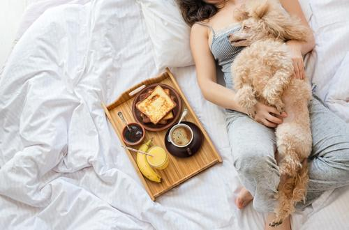 breakfast in bed with dog