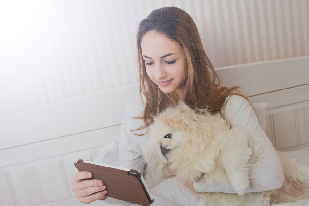comparing pet insurance