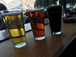 MattFitz Brewery Logo