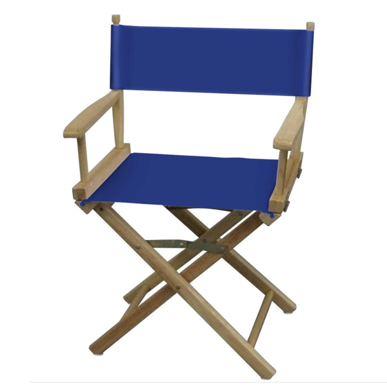 Blue directors chair