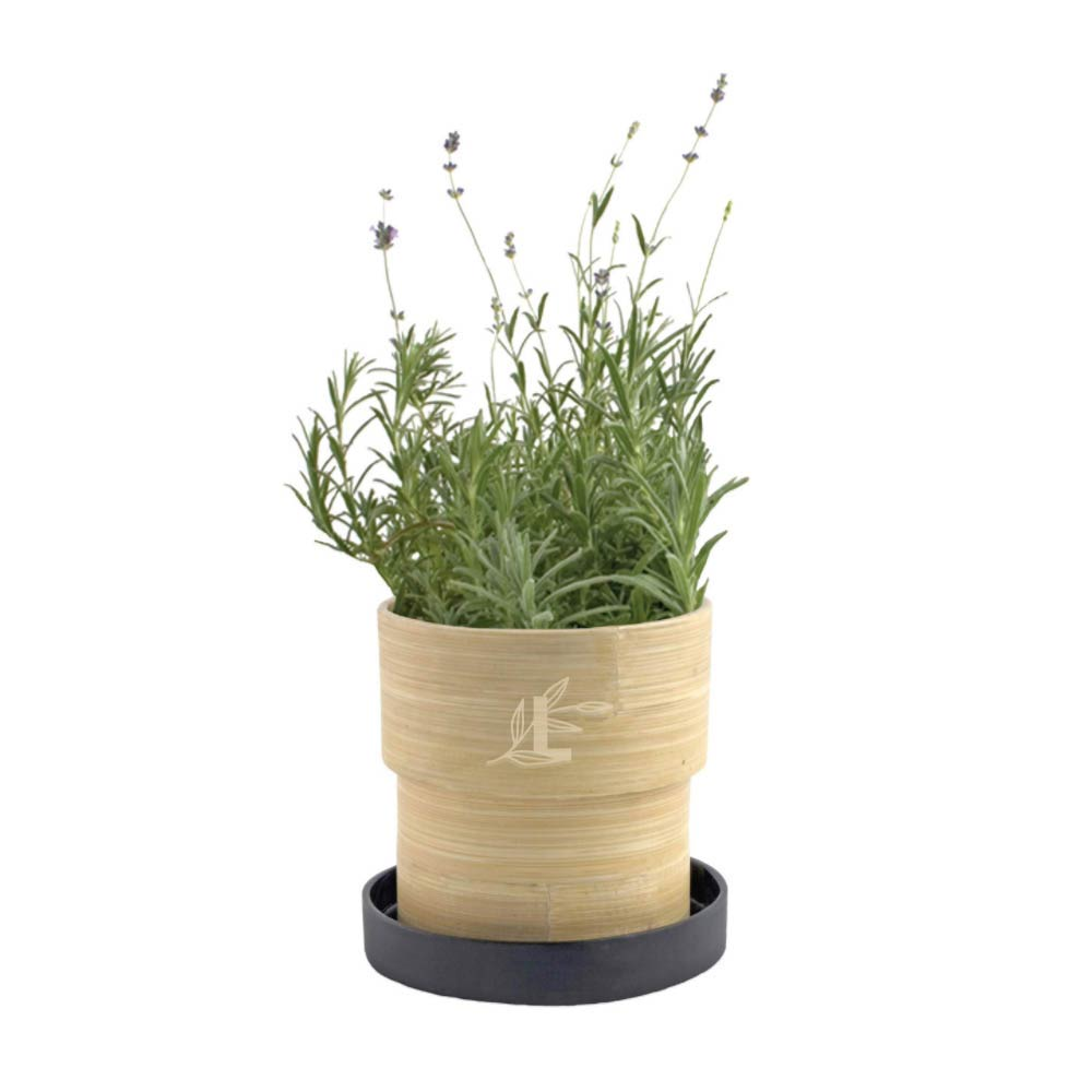 289348 lavender in bamboo planter engraved or one color logo