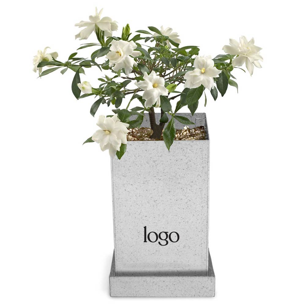302821 bonsai gift planter one color logo on planter