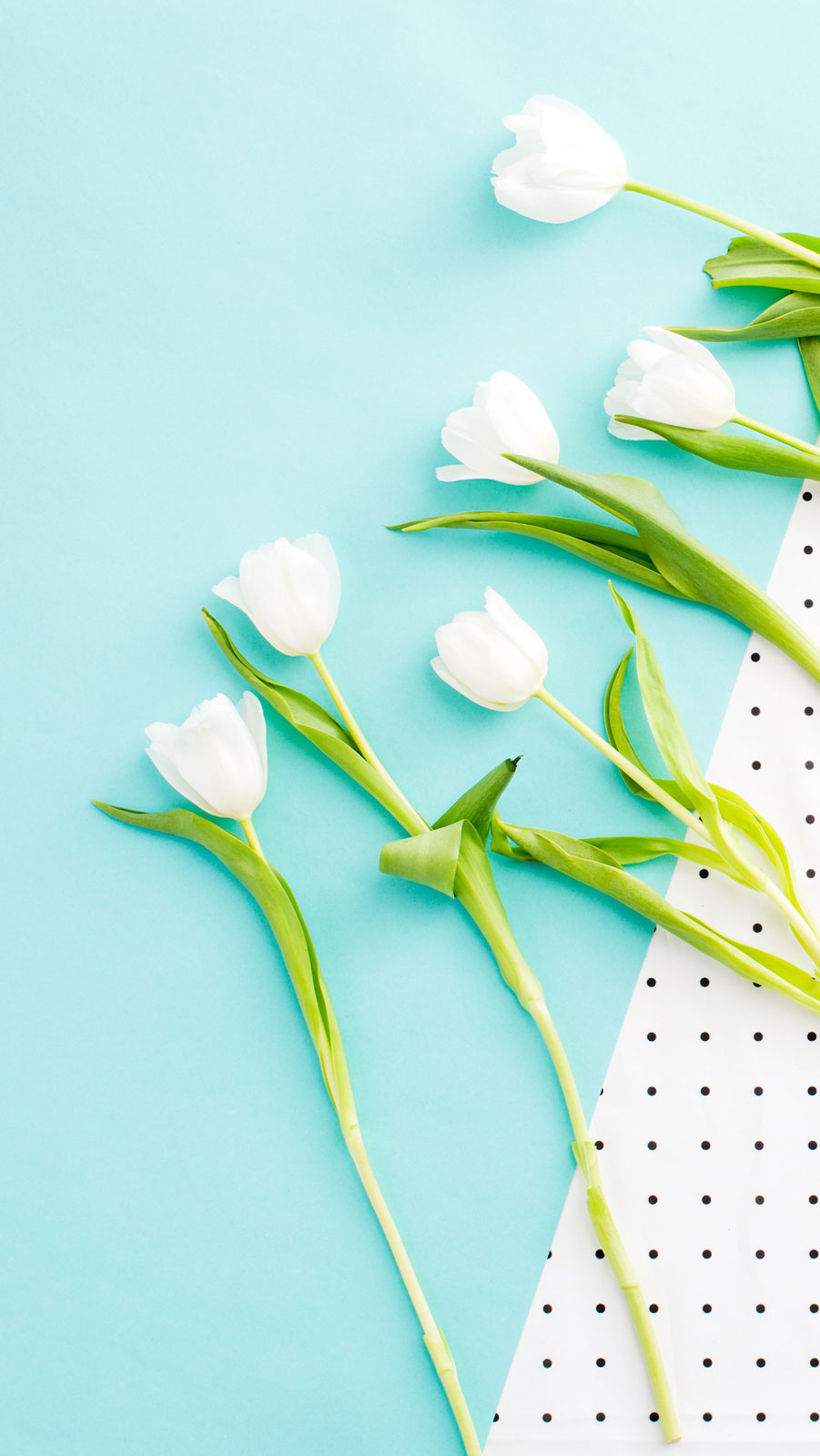 Download White Tulips On Polka Dots