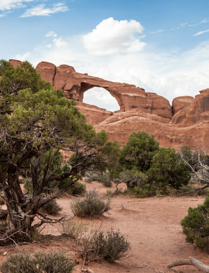 Top 7 family-friendly hikes at Arches National Park
