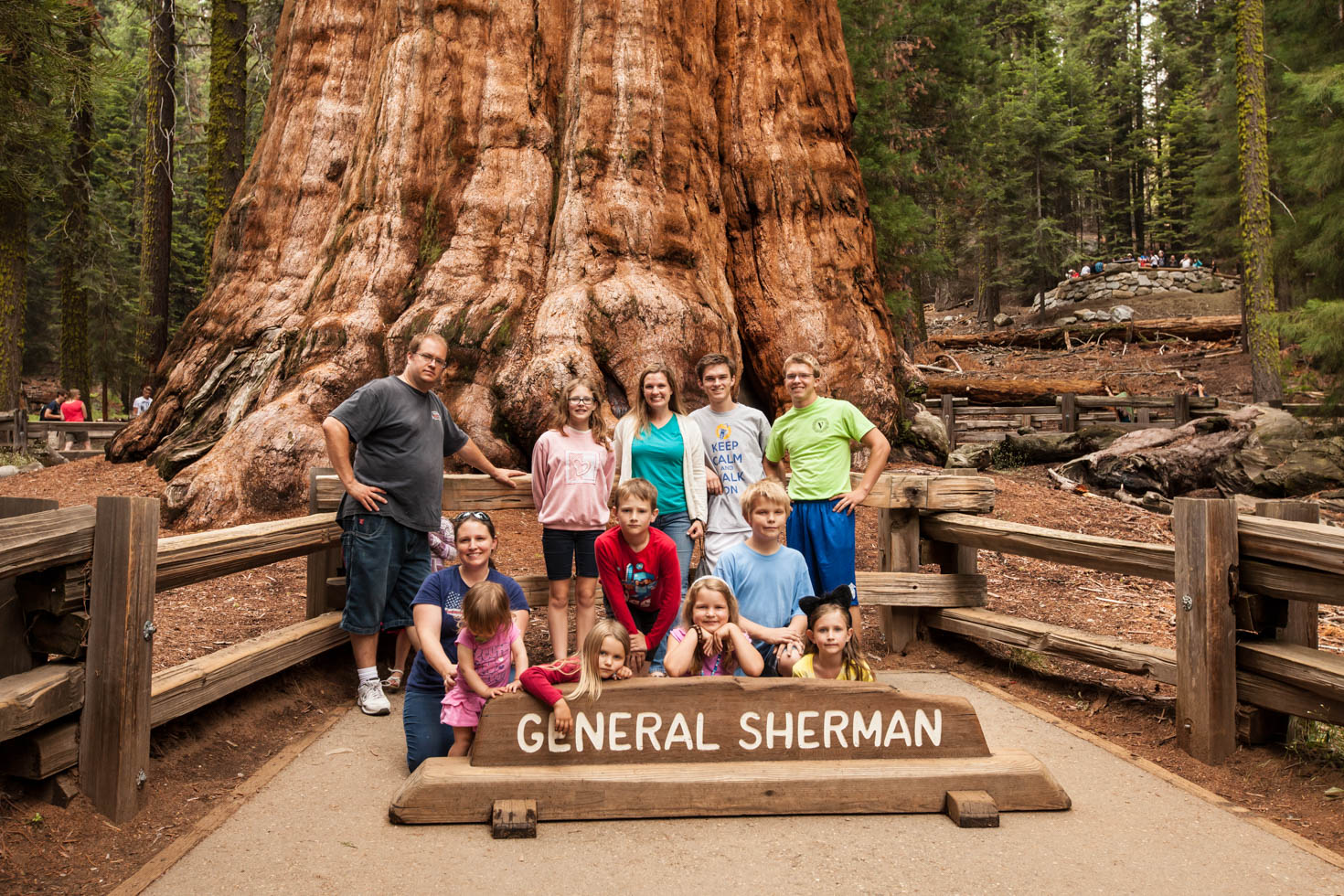 General Sherman Tree, Sequoia National Park, CA #vezzaniphotography