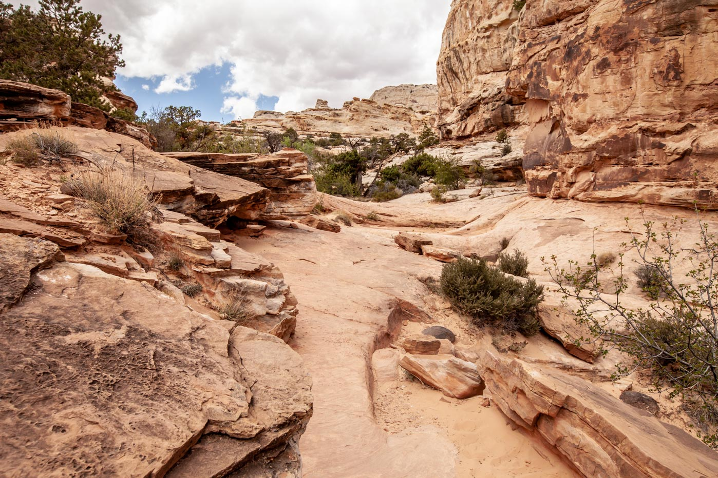 Hiking to Hickman Natural Bridge at Capitol Reef National Park #vezzaniphotography