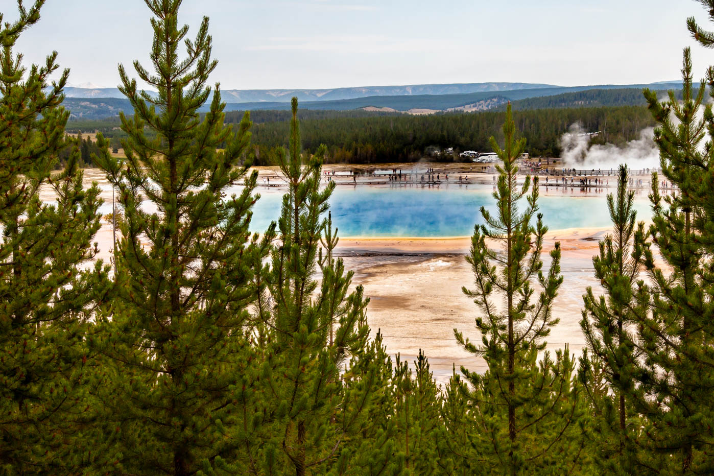 Grand Prismatic Spring Overlook in Yellowstone National Park #vezzaniphotography