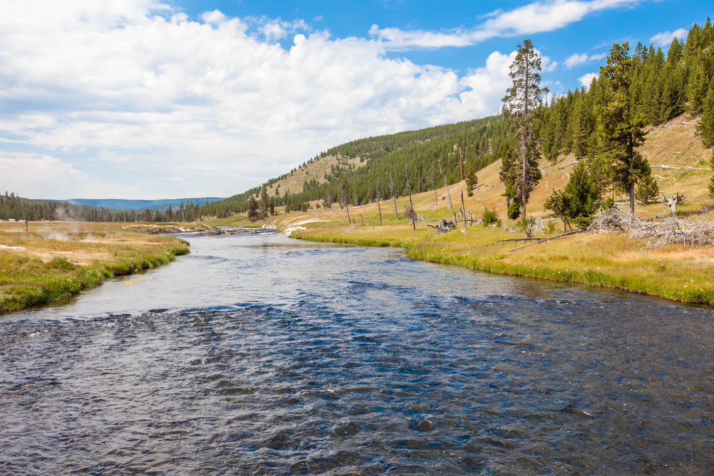 Firehole River next to the trail head to the Grand Prismatic Spring Overlook in Yellowstone National Park #vezzaniphotography