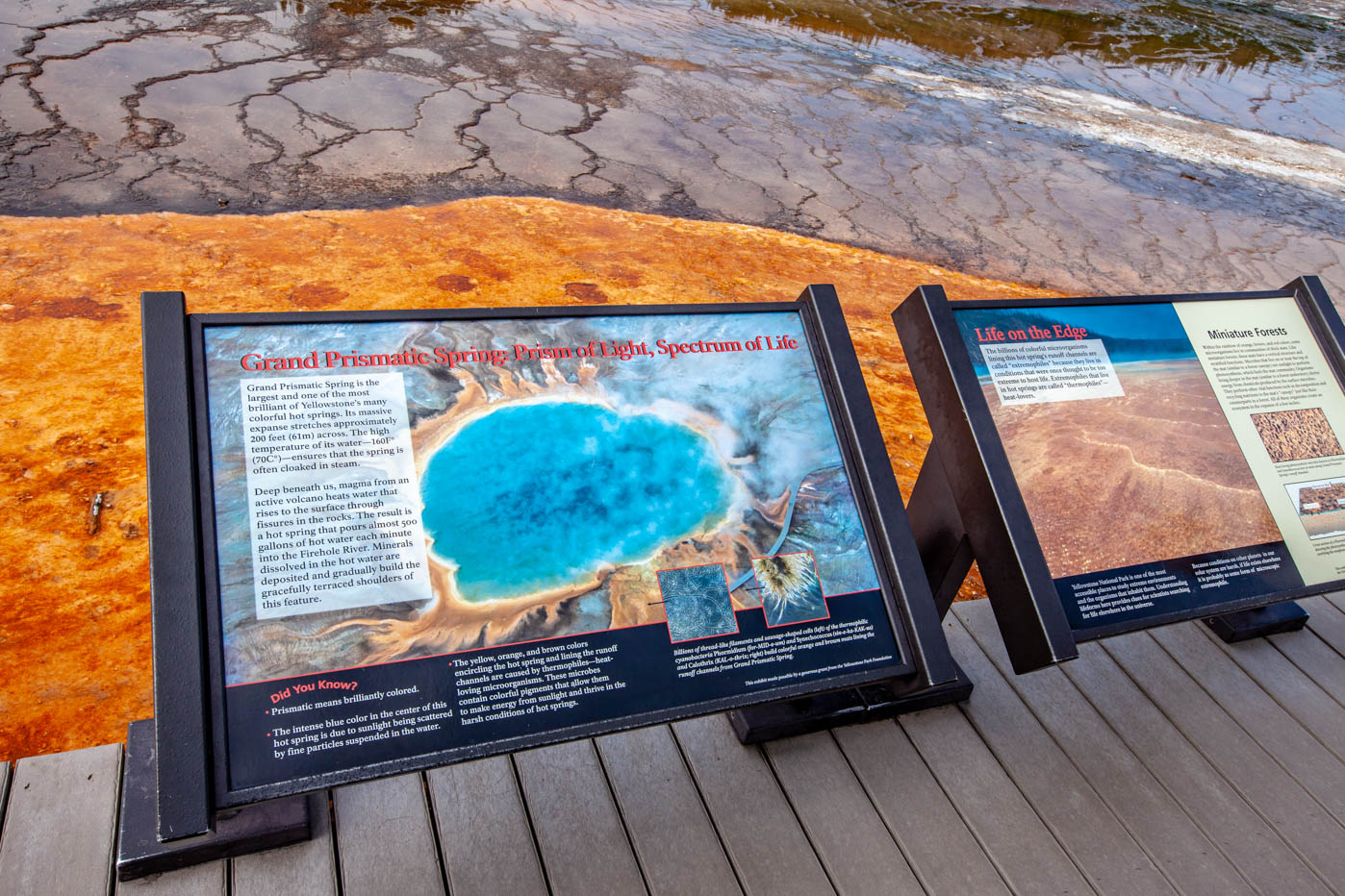 Up Close and Personal with the Grand Prismatic Spring at Yellowstone National Park #vezzaniphotography