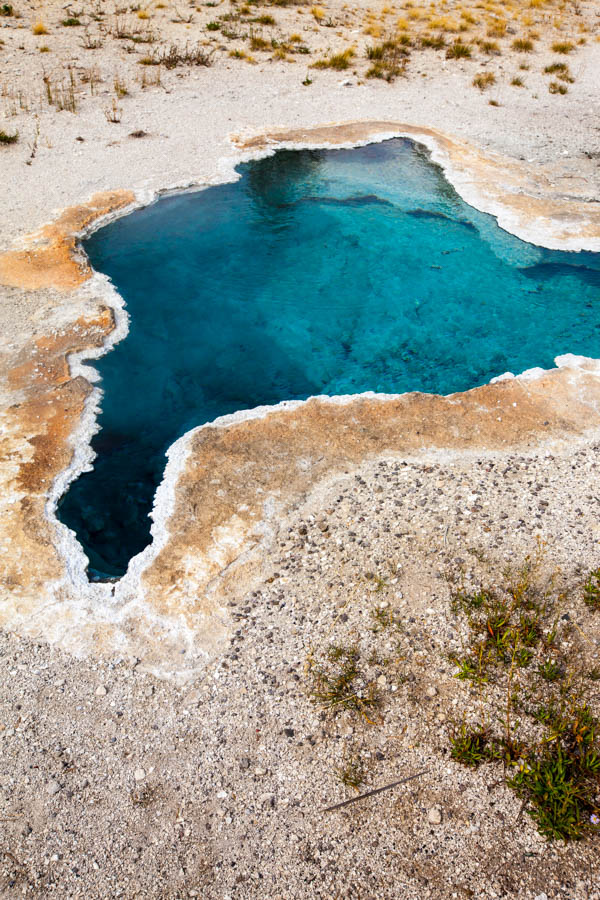 Blue Star Spring Near Old Faithful in Upper Geyser Basin at Yellowstone National Park #vezzaniphotography