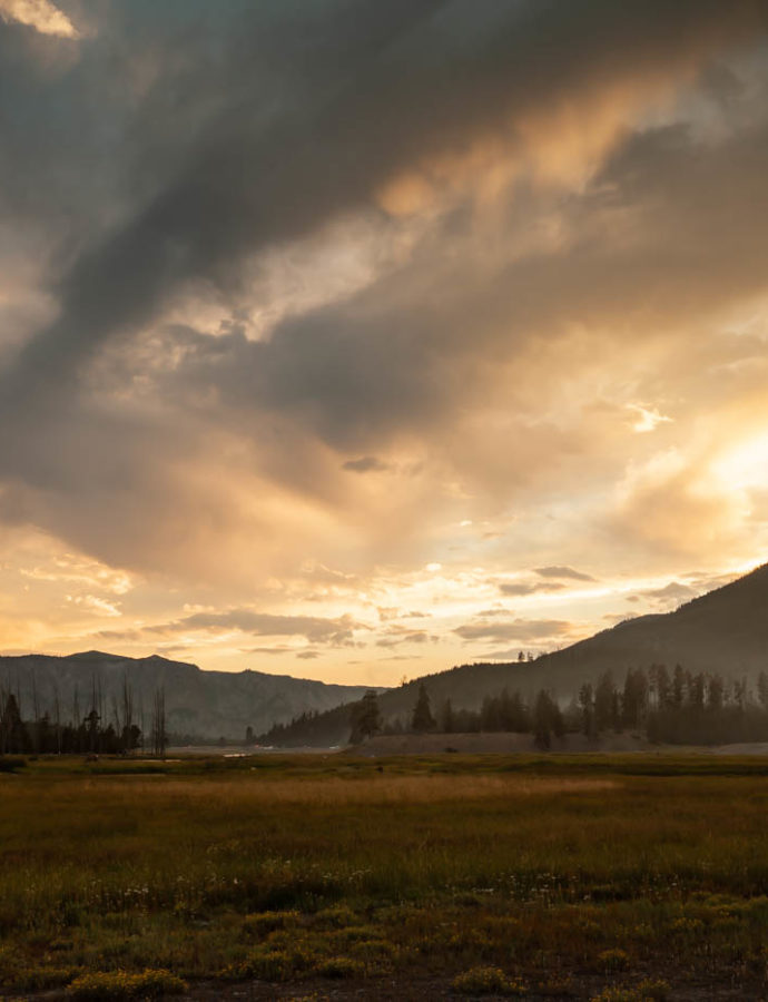 Why I Fell in Love with Madison Campground in Yellowstone National Park