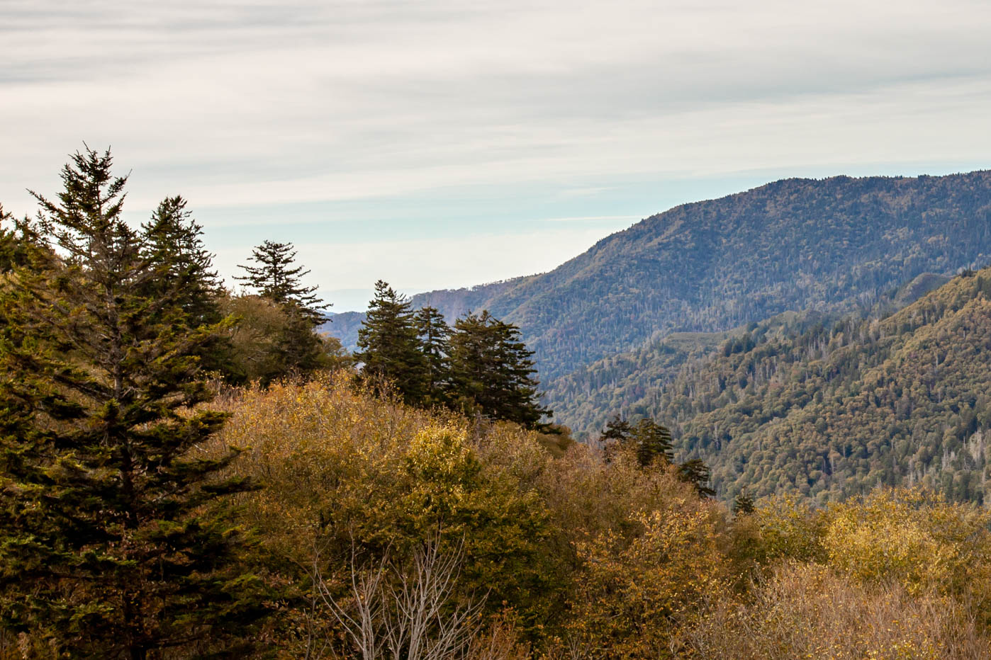 Newfound Gap Overlook off of Newfound Road at Great Smoky Mountains National Park #vezzaniphotography