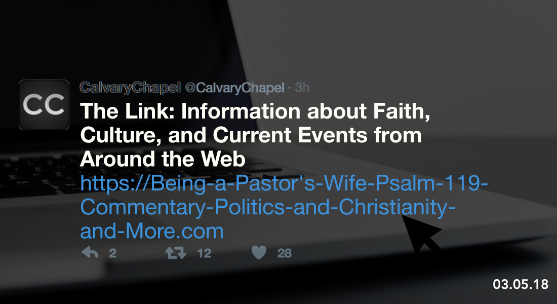 The Link: Being a Pastor's Wife, Psalm 119 Commentary, Politics & Christianity and More