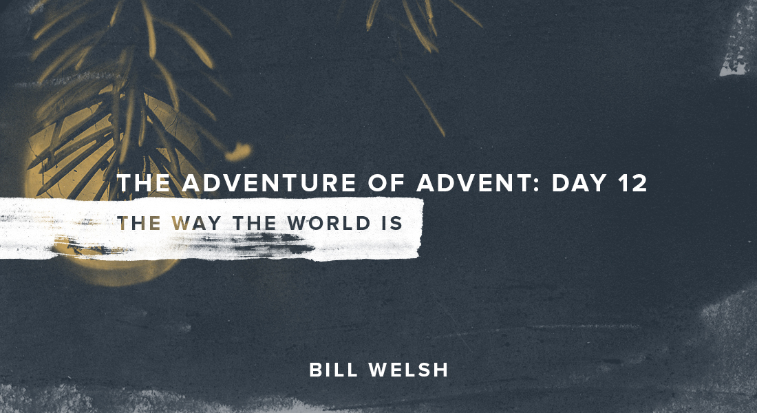 The Adventure of Advent: Day 12 – The Way The World Is