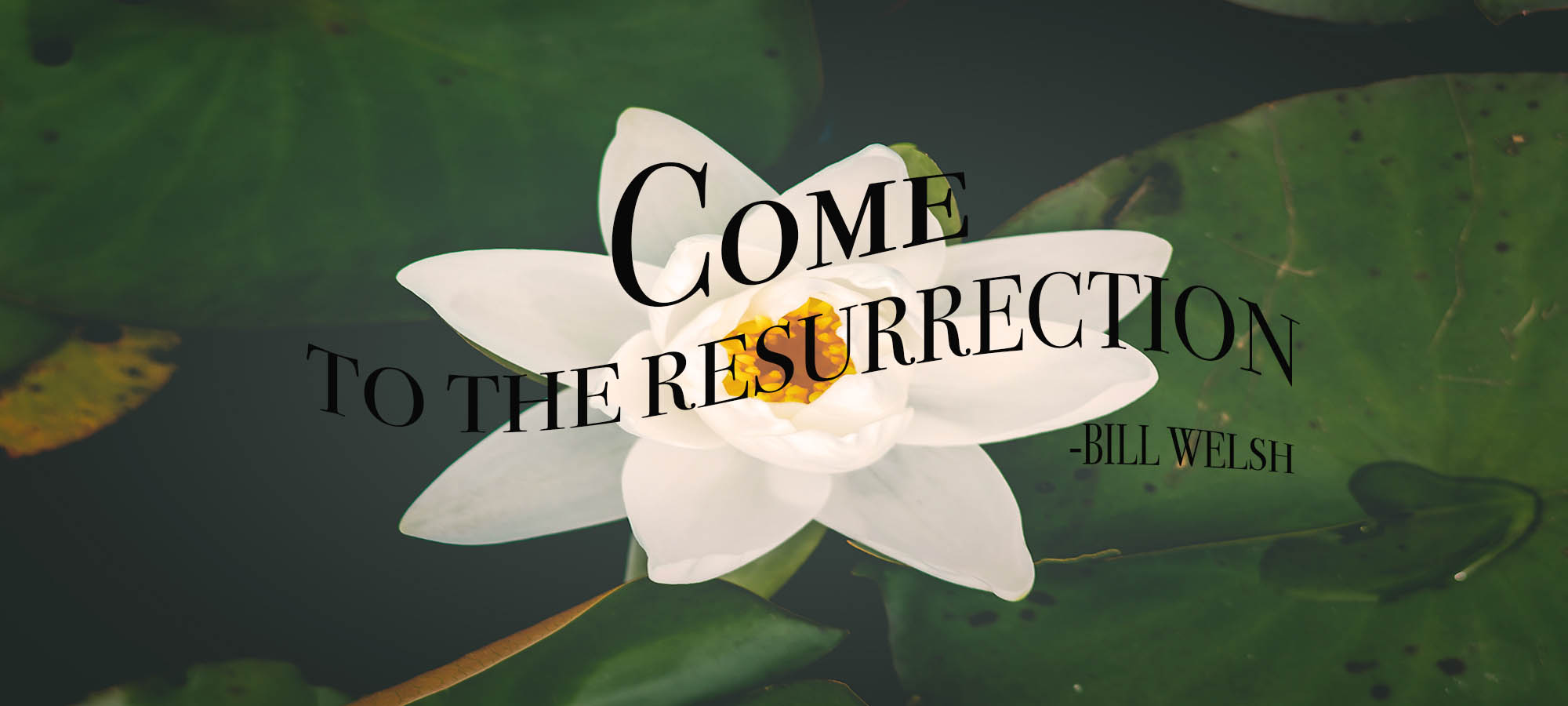 Come to the Resurrection