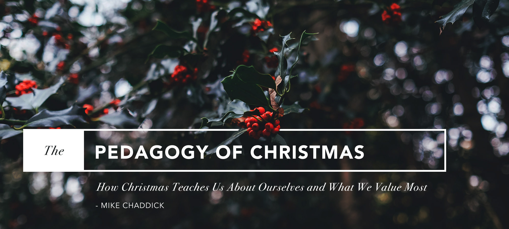 The Pedagogy of Christmas: How Christmas Teaches Us About Ourselves, and What We Value Most