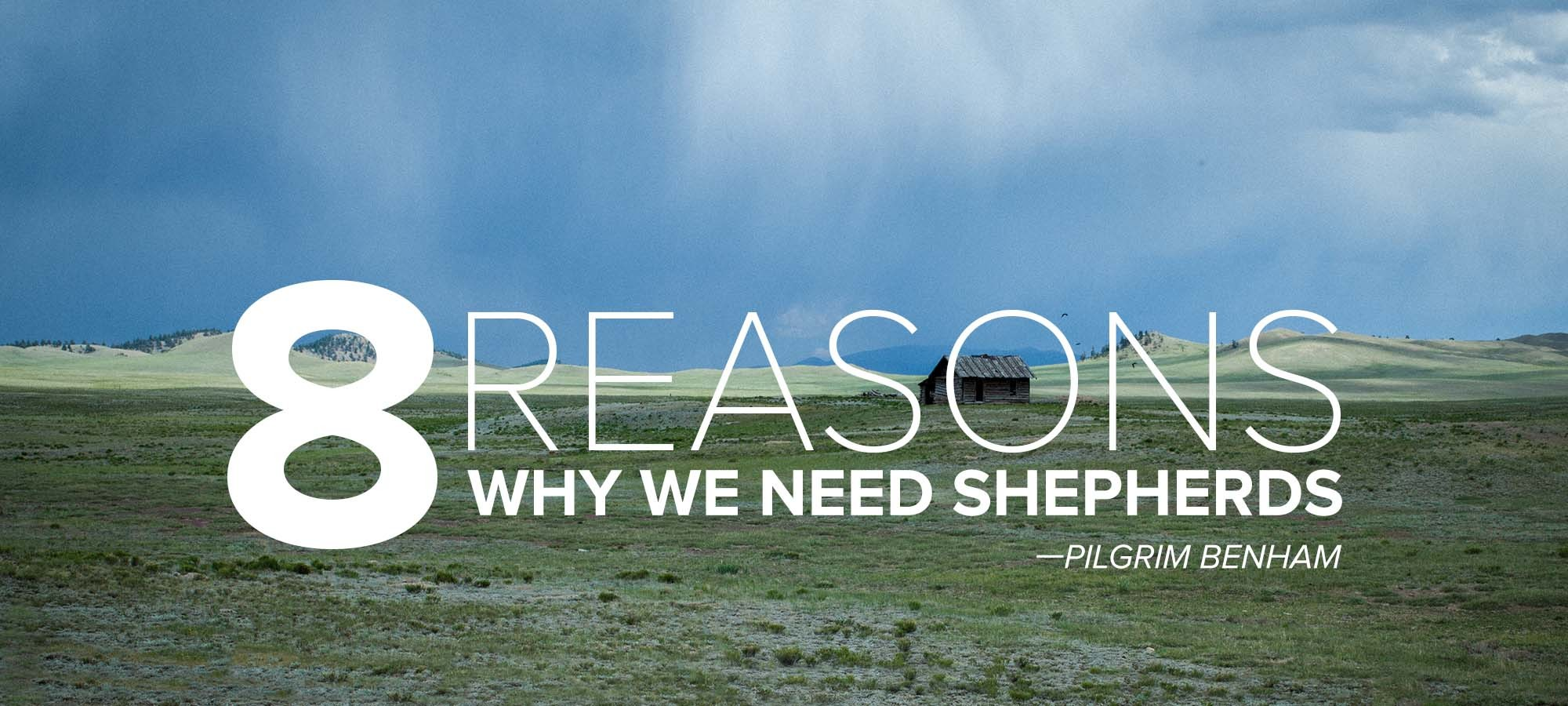 Eight Reasons Why We Need Shepherds