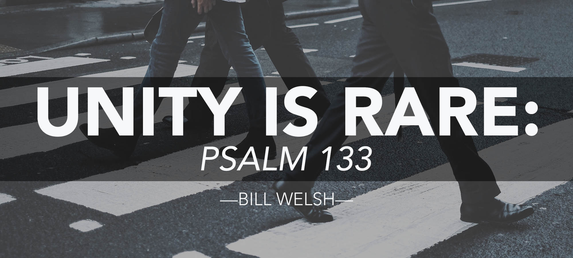 Unity is Rare: Psalm 133