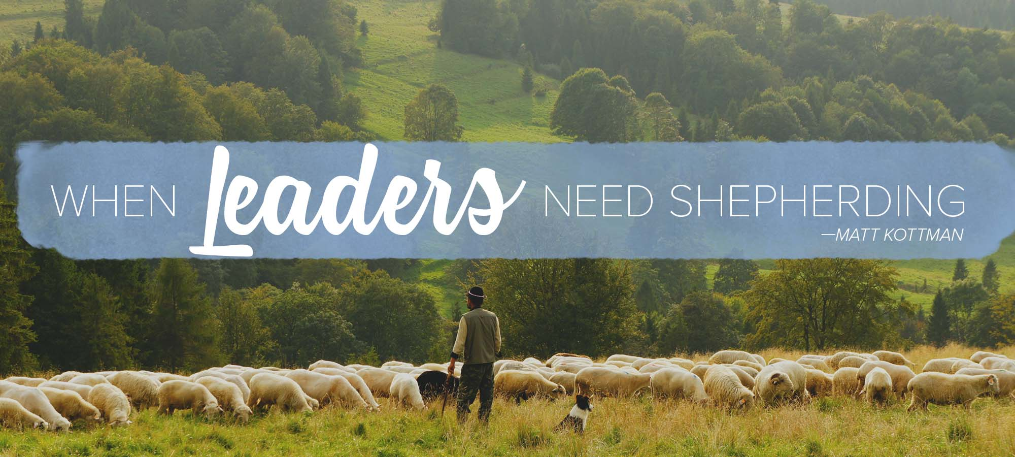 When Leaders Need Shepherding